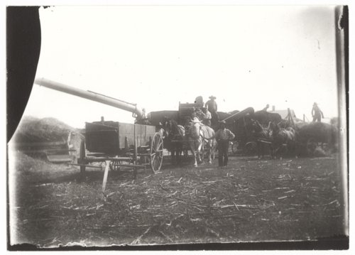 Threshing rig and crew, Wilson County, Kansas - Page