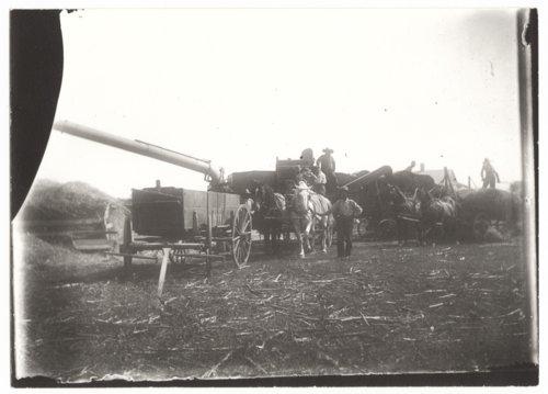 Threshing rig and crew, Wilson County, Kansas - Page