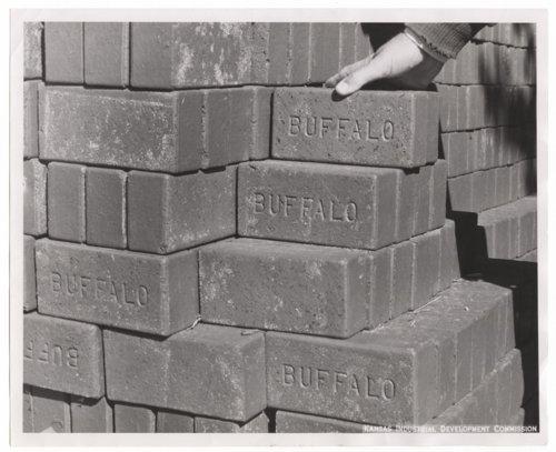 Buffalo bricks, Wilson County, Kansas - Page
