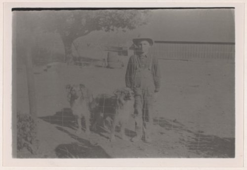 Albert E. Brosa and his pet collies, Valley Falls, Kansas - Page