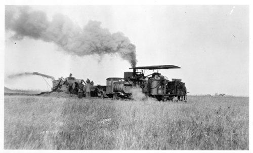 Wheat harvest scene, Thomas County, Kansas - Page