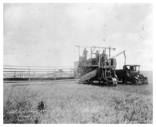 Holt Combine Harvester harvesting in the fields of Thomas County, Kansas - Page