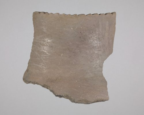 Great Bend aspect Rim Sherd from the Thompson Site, 14RC9 - Page