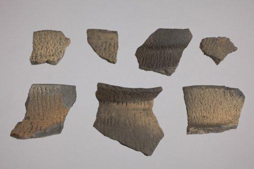 Rim Sherds from 14SA409 - Page