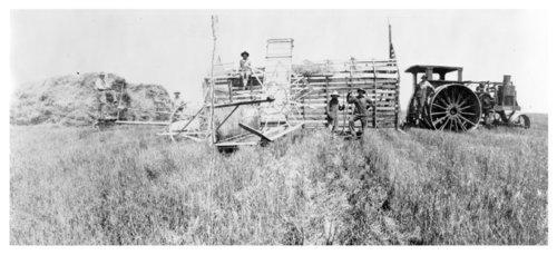 Wheat harvest on the Harris farm, Thomas County, Kansas - Page