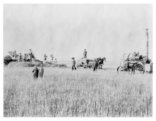 J.P. Henstrom harvest crew and equipment, Thomas County, Kansas - Page