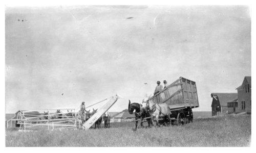 John Lacey's wheat harvest crew, Thomas County, Kansas - Page