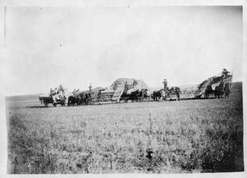 E.P. Towslee and Sons wheat harvest crew, Thomas County, Kansas - Page