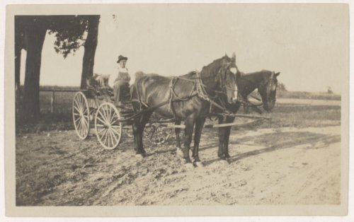Scipio Livingston with his horse drawn carriage in Valley Falls, Kansas - Page