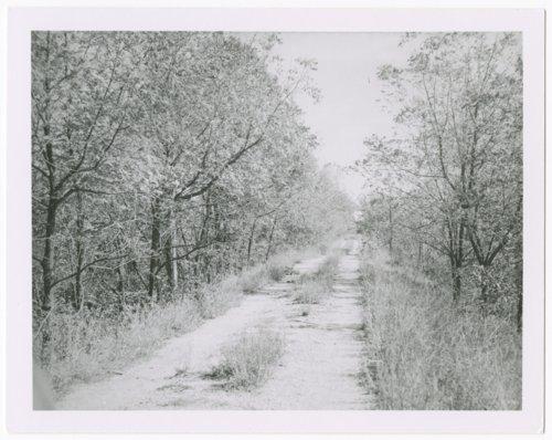 Atchison, Topeka & Santa Fe Railway Company roadbed, Elgin, Kansas. - Page