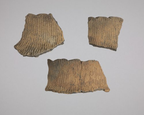 Rim Sherds from 14EK318 - Page