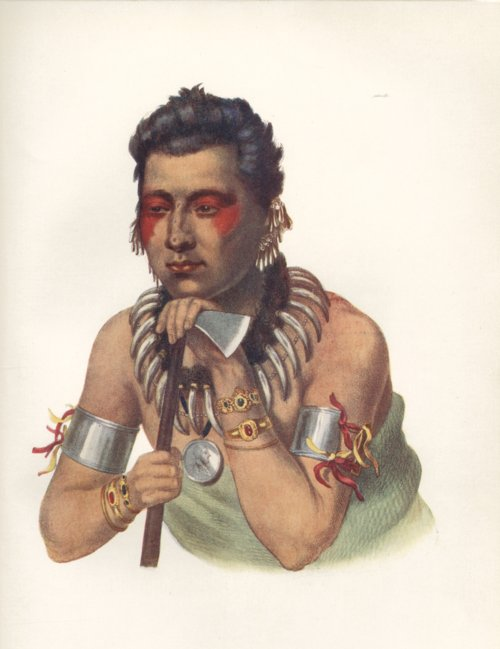 Chief of the Iowas drawing - Page