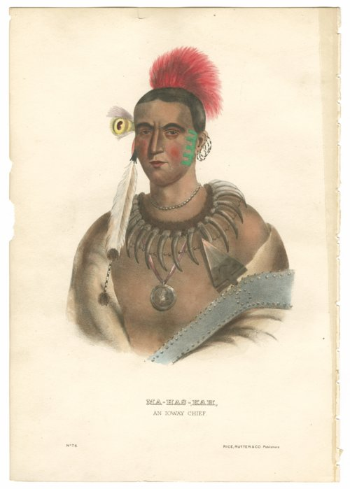 Ioway Chief drawing - Page