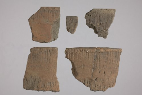 Rim Sherds from 14EK314 - Page