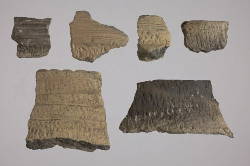 Rim Sherds from Jewell County - Page