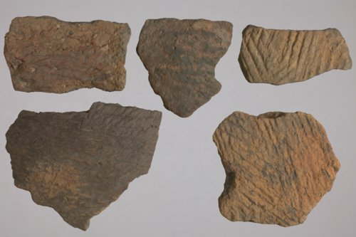 Ceramic Pot Sherds from 14FR401 - Page
