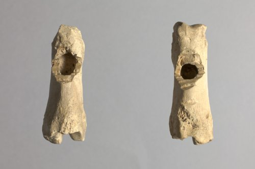 Modified Bone from Fool Chief's Village, 14SH305 - Page