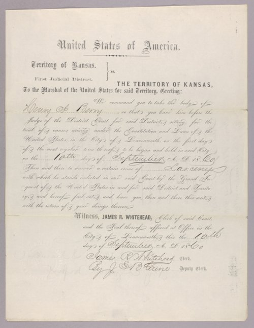 United States versus Henry Berry and Alfred C. McLane for horse stealing - Page