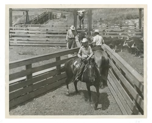 Four cowboys at the Cassoday, Kansas stock pens, Butler County, Kansas - Page