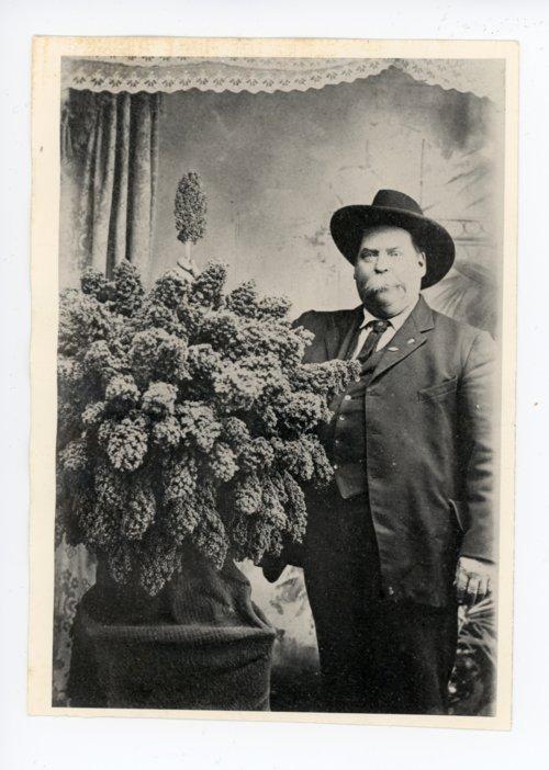 Man poses with large bunch of kaffir corn, El Dorado, Butler County, Kansas - Page