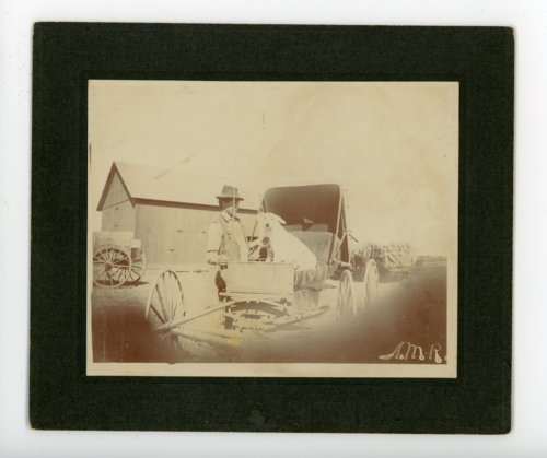 Man and Dog with Buggy, Butler County, Kansas - Page