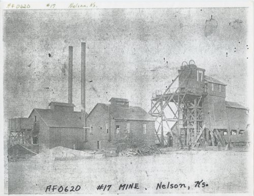 Nelson mining camp, Crawford County, Kansas - Page