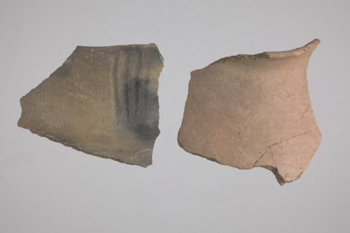Rim Sherds from the Crandall Site, 14RC420 - Page