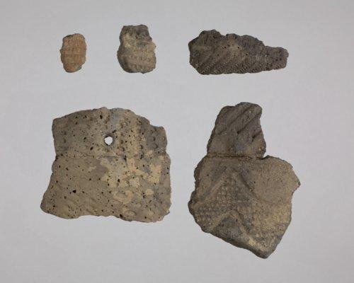 Ceramic Sherds from 14EK309 - Page