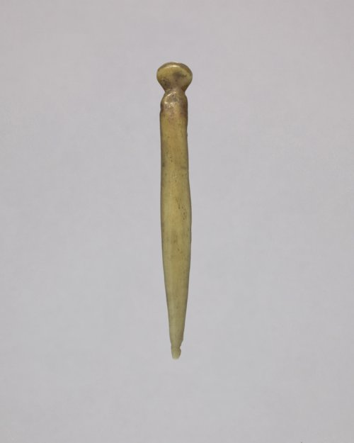 Polished Bone Tool from 14WY319 - Page