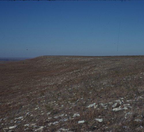 Flattop quarry site, 14CS2 - Page
