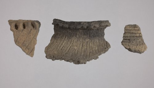 Rim Sherds from the Minneapolis Site, 14OT5 - Page