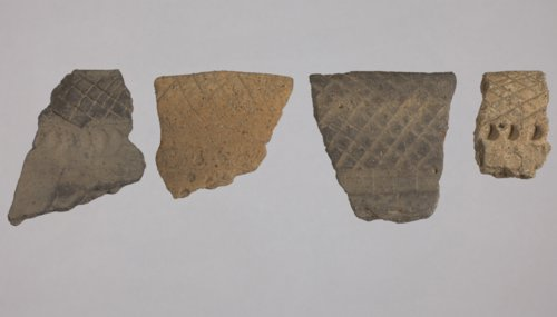 Kansas City Hopewell Rim Sherds from 14DP1318 - Page