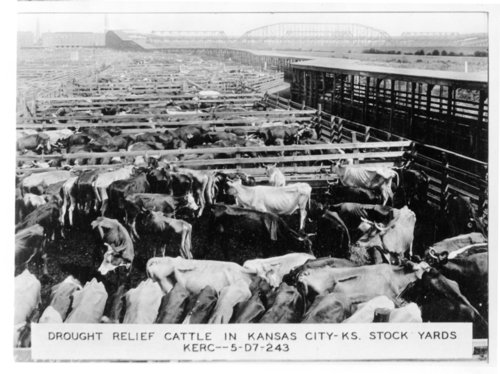 Stock yards photograph - Page