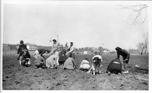 Onion planting, Haskell Institute, Lawrence, Kansas - Page