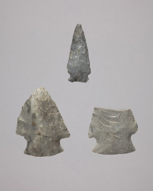 Projectile Points from the Sylvester #1 Site - Page