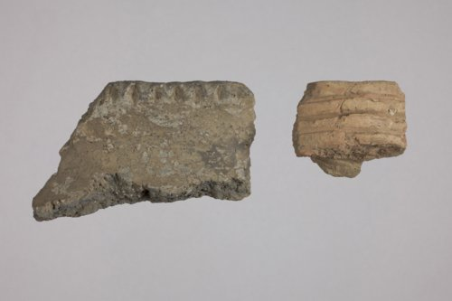 Ceramic Rim Sherds from the Fanning Site, 14DP1 - Page