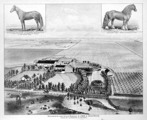 Bostwick Stock Farm - Page