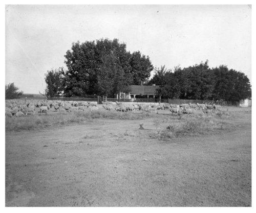 John Fenton Pratt ranch, Sheridan County, Kansas - Page
