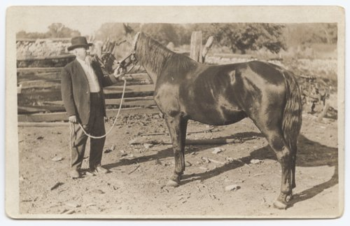 Patrick Gorman with his prized horse on his farm near Fulton, Kansas - Page