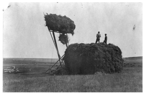 Stacking alfalfa on the Bull farm, Logan County, Kansas - Page