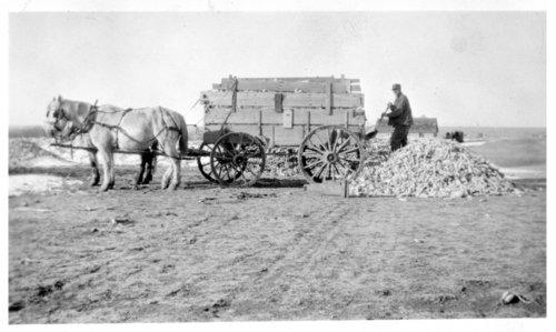 Carl Hanson farm, Logan County, Kansas - Page