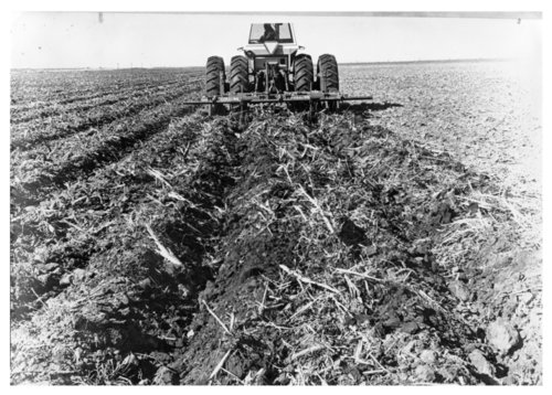 Plowing a field in Logan County, Kansas - Page
