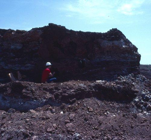 Ecavation of Bison Bones at 14BA320 - Page