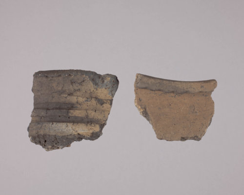 Rim Sherds from the Taylor Site, 14DP19 - Page