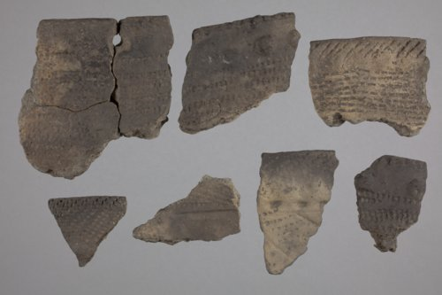 Ceramic Sherds from Arrowhead Island, 14CF343 - Page