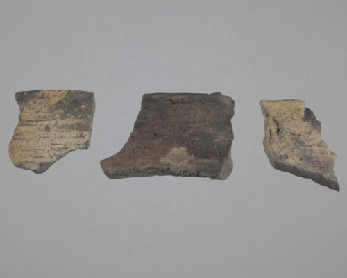 Ceramic Rim Sherds from the Wullscheleger Site, 14MH301 - Page
