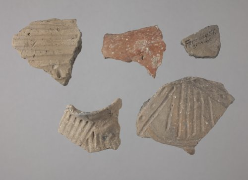 Rim Sherds from the Fanning Site - Page