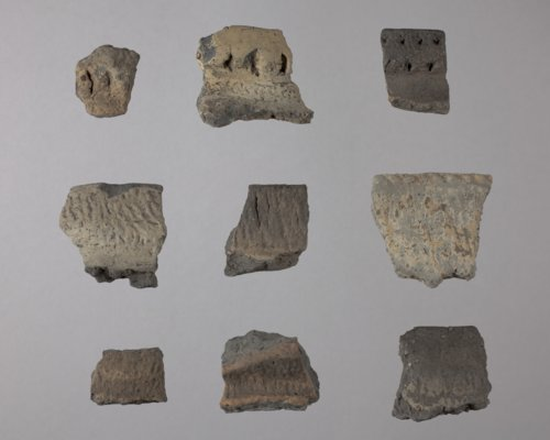Rim Sherds from the Wullscheleger Site, 14MH301 - Page