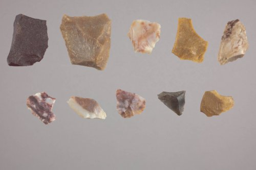 Lithic Collection from 14GT301 - Page