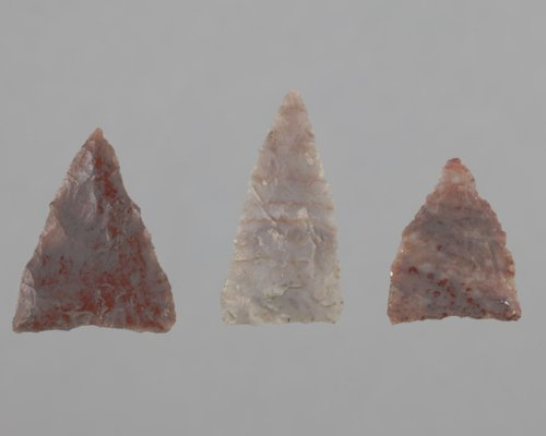 Fresno Arrow Points from the Paint Creek Site, 14MP1 - Page
